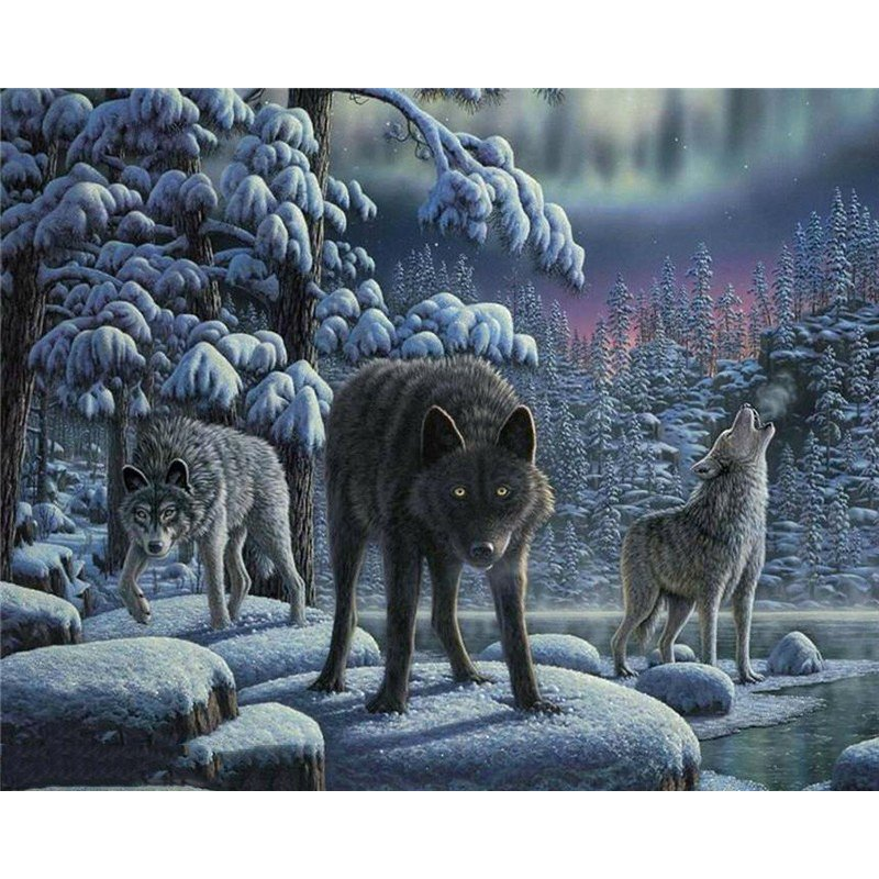 Night wolves DIY Acrylic Paint by Numbers kit