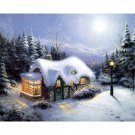 Christmas house DIY Acrylic Paint by Numbers kit