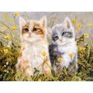 Cute kittens DIY Acrylic Paint by Numbers kit