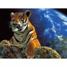 Tiger DIY Acrylic Paint by Numbers kit