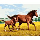Horses DIY Acrylic Paint by Numbers kit