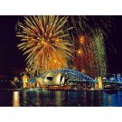 Sidney Fireworks DIY Acrylic Paint by Numbers kit