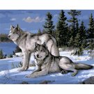 Snow Wolves DIY Acrylic Paint by Numbers kit