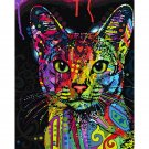 Colorful Cat DIY Acrylic Paint by Numbers kit