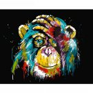 Colorful Chimp DIY Acrylic - NOT AVAILABLE AT THE MOMETN