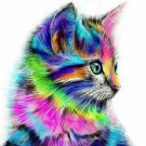 Colorful Cat DIY Acrylic - NOT AVAILABLE AT THE MOMETN