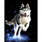 Haski Dog DIY Acrylic - NOT AVAILABLE AT THE MOMETN