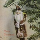 Christmas Postcard Santa Claus as a Christmas Tree Ornament