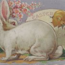 Antique Easter postcard rabbits baby chicks embossed unposted divided