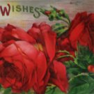 Antique Birthday Postcard Red Roses Divided Unposted Glossy