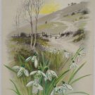Antique Easter Postcard Floral John Winsch Germany Embossed Glossy Unposted