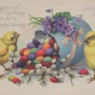 Antique Easter Postcard Chicks Colored Eggs Unposted Divided
