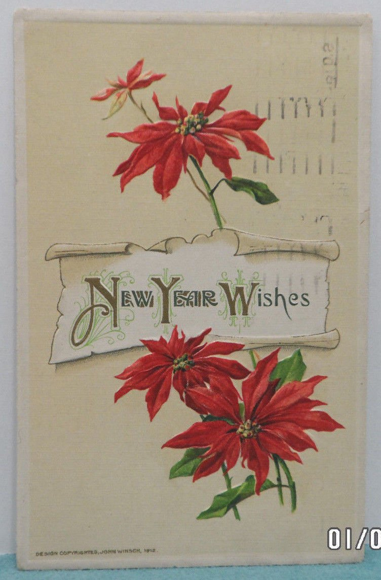 Antique New Year Postcard Poinsettia by John Winsch Germany Embossed Posted 1911