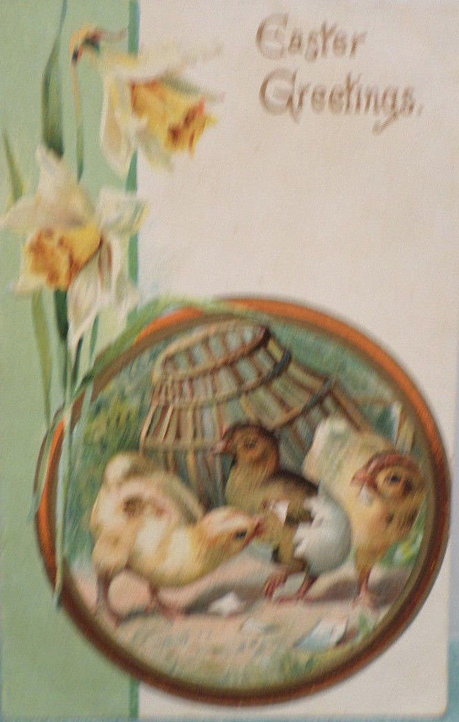 1907 Easter Postcard Baby Chicks Eggs Embossed Posted Undivided