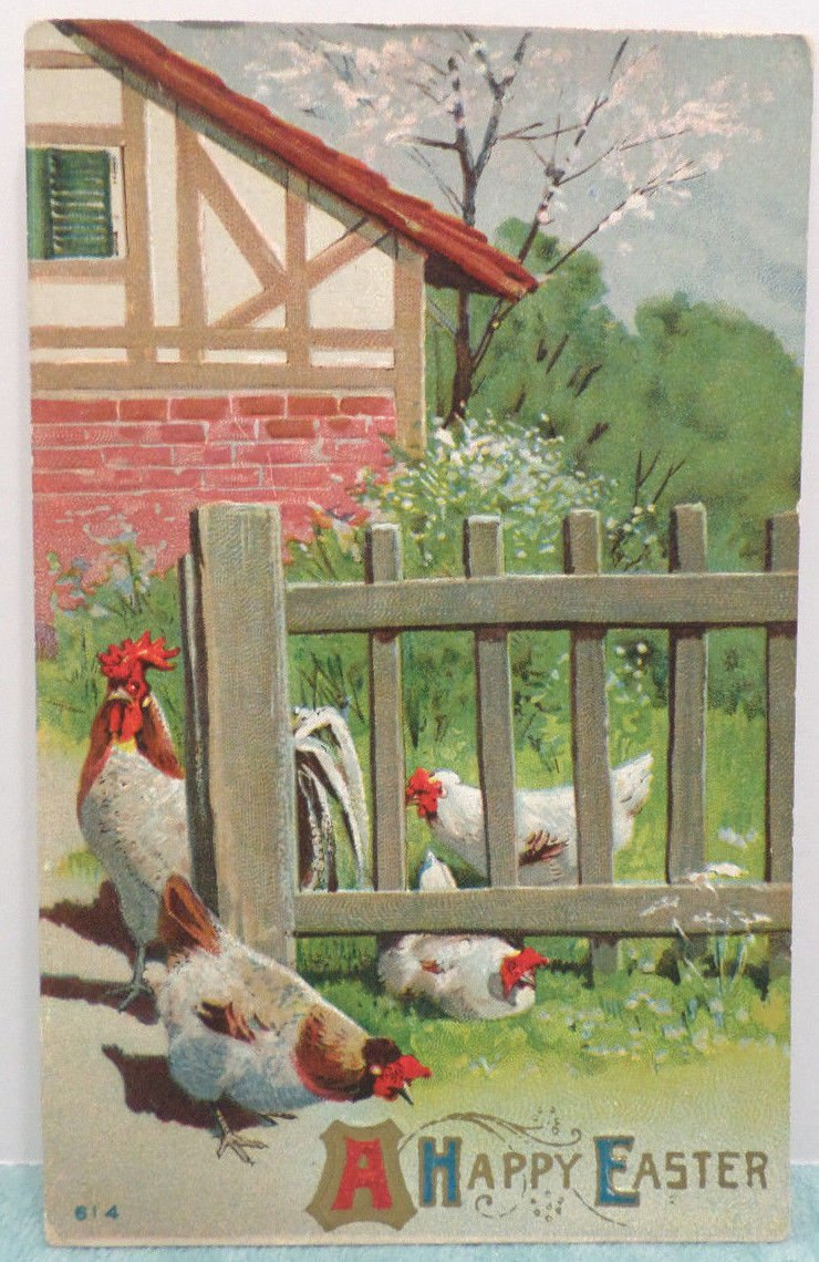 Antique Easter Postcard Rooster Hen Chicks Embossed Posted Divided
