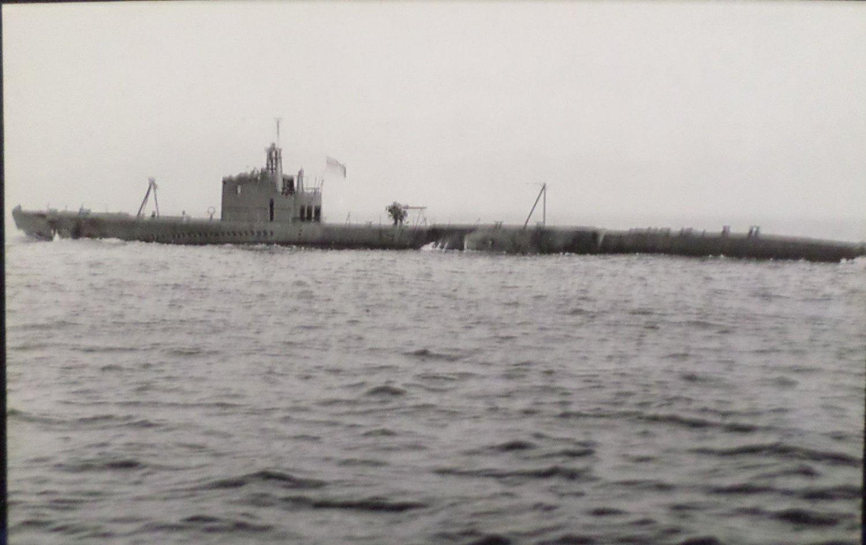 U.S.S. Stingray SS-186 Battleship Real Photo Postcard Official U.S. Navy NEW