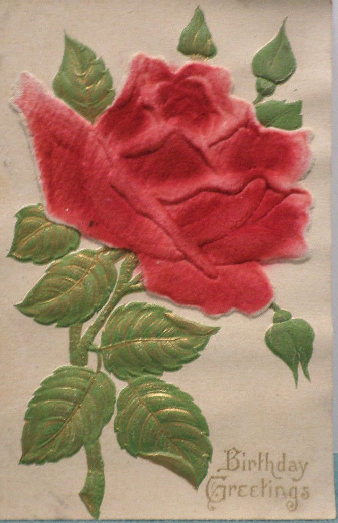 Antique Birthday Postcard Red Velvet Rose Heavily Embossed Unposted Germany