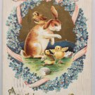 Antique 1909 Easter Postcard Rabbit Chicks Embossed Posted Divided