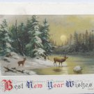 Antique 1911 New Year Postcard Country Scene by John Winsch Germany Unposted