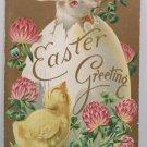 1909 Easter Postcard Rabbit Chick Egg Embossed Posted Divided
