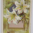 Antique Easter Postcard White Lilies Embossed Posted Divided