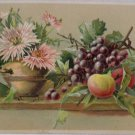 Antique Postcard Flowers and Fruit Posted Divided