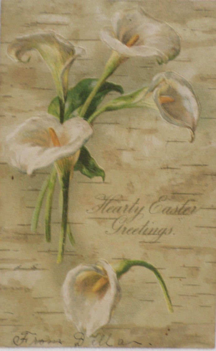 Antique Easter Postcard Lilies Embossed Posted Undivided
