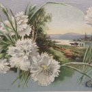 1911 Easter Postcard Scenic Winsch Embossed Unposted Divided