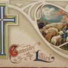 Antique Easter Postcard Little Boy Sheep Miller Embossed Posted Divided