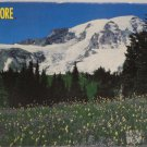 500 piece jig saw puzzle Rainier National Park by Rose Art 1993