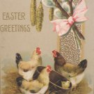 Antique Easter Postcard Hens Chicks Embossed Posted Divided