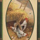 1911 Easter Postcard Rooster Hens Glossy Embossed Posted Divided