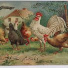 Antique Easter Postcard Rooster and Hens Embossed Divided Posted