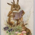 1907 Easter Postcard Humanized Rabbits Colored Eggs Tuck and Sons Embossed