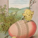 Antique Easter Postcard Baby Chicks Egg Embossed Unposted Divided