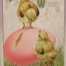 Antique Easter Postcard Baby Chicks Egg Unposted Divided