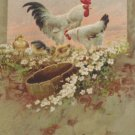 Antique Easter Postcard Roosters Duckling Chicks Embossed Unposted Divided