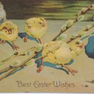 Antique Easter Postcard Baby Chicks Cat Embossed Posted Divided