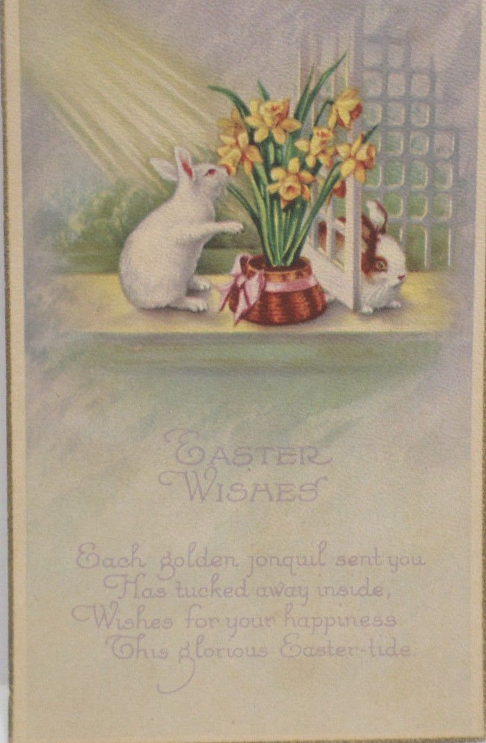 Easter Postcard Rabbits Yellow Flowers Unposted Divided