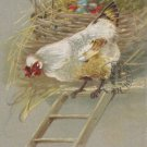 Antique Easter Postcard Hen Walking Down Ladder Colored Eggs in Nest Posted