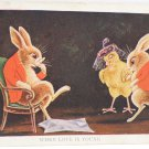Antique Easter Postcard Humanized Rabbits and Baby Chick Unposted Divided