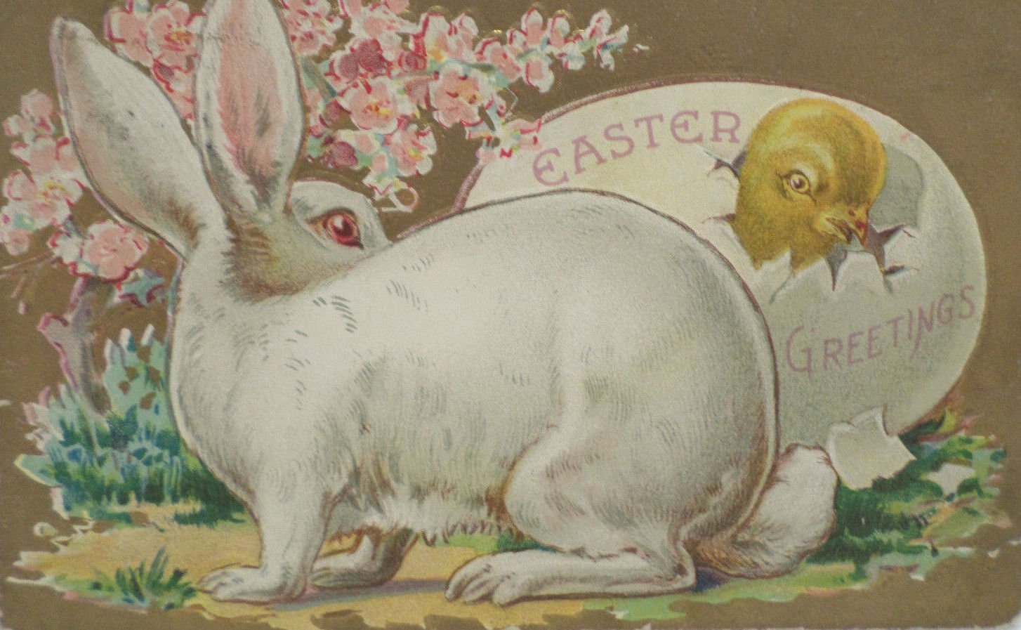 Antique Easter Postcard Rabbit Chick and Egg Embossed Posted Divided