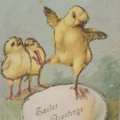 Antique Easter Postcard Baby Chicks Eggs Unposted Divided