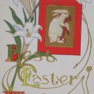 Antique Easter Postcard Rabbit Lillies USA Embossed Unposted Divided