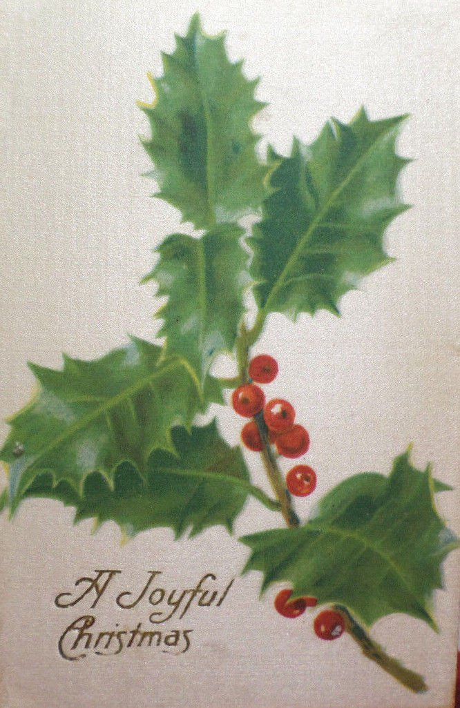 Antique Christmas Postcard Silk Holly Germany Unposted Divided