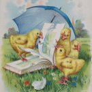 Antique Easter Postcard Baby Chicks Reading a Book Embossed Posted Undivided