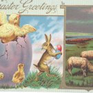 Easter Postcard Humanized Rabbit Running Away with Easter Eggs and Chicks