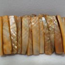 Womens Bracelet Abalone Shell Elastic