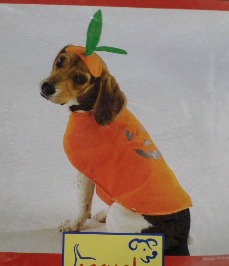 Halloween Costume Pet Dog Pumpkin Pup size X-Small by Casual Canine