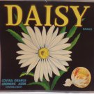 Vintage Crate Label Daisy Covina Orange Growers Association Original not a copy